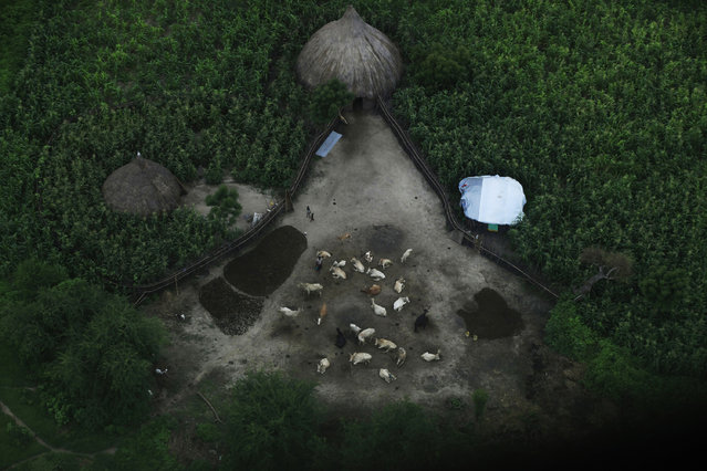 An aerial view of a house in its compound in Leer, Unity State, South Sudan. (Photo by Andreea Campeanu/Reuters)