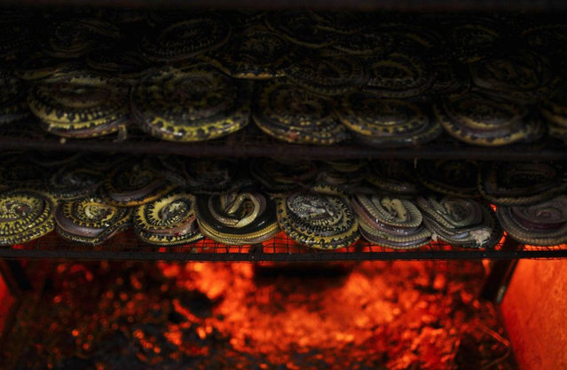 How Snakeskin Handbags Are Made