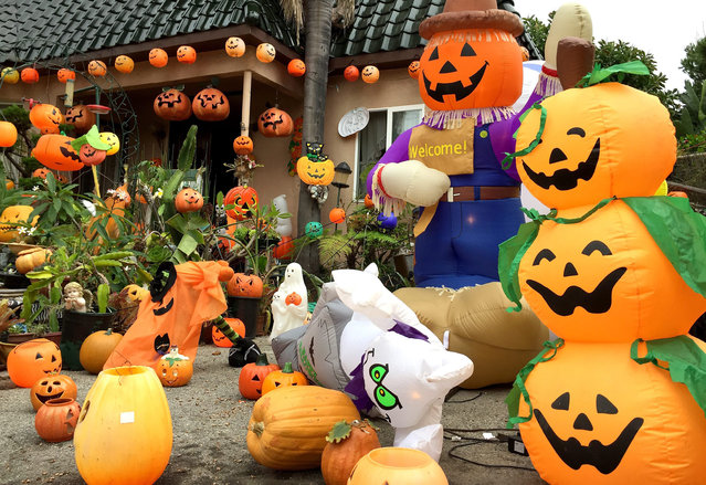 A house is adorned with hundreds of pumpkin decorations in the Los Angeles suburb of Santa Monica, California, USA,  16 October 2015, as an early start on Halloween. In the United States Halloween, held on 31 October, celebrants often decorate their homes with scary decorations such as witches, spiders and draculas as well as the traditional carved pumpkin. (Photo by Mike Nelson/EPA)