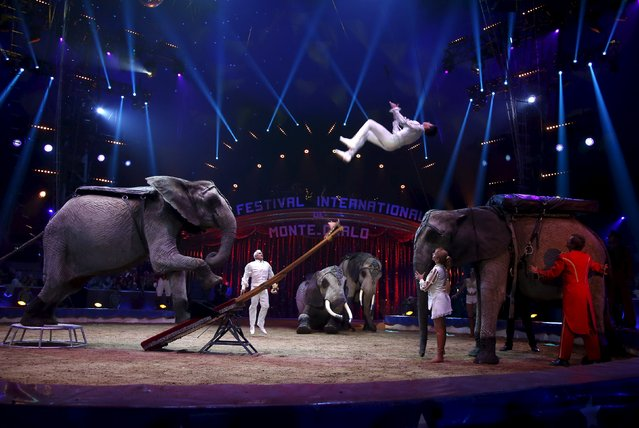 The Cassely family and their African elephants perform during the opening of the 40th Monte-Carlo International Circus Festival in Monaco January 14, 2016. (Photo by Eric Gaillard/Reuters)
