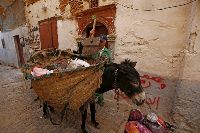 A garbage collector collects rubbish with the aid of donkeys in the old city of Algiers Al Casbah, Algeria  December 9, 2015. (Photo by Zohra Bensemra/Reuters)