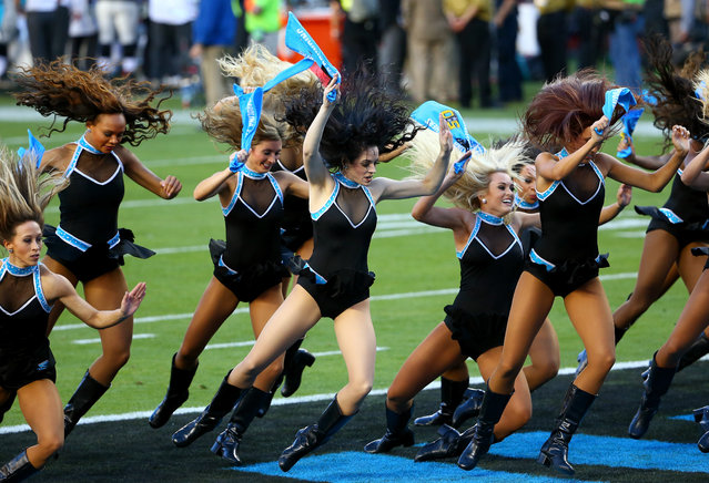 Cheerleaders for the Carolina Panthers perform in the first half against the Denver Broncos during Super Bowl 50 at Levi's Stadium on February 7, 2016 in Santa Clara, California. (Photo by Maddie Meyer/Getty Images)