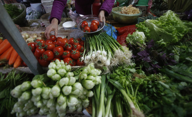 A food and vegetable seller weights tomato at a market in Hanoi, Vietnam, February 24, 2016. (Photo by Reuters/Kham)