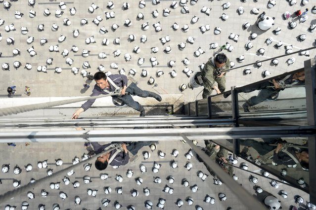 Workers clean windows of an office building above panda installations on display, in Taiyuan, Shanxi province, April 22, 2015. About 280 panda installations were displayed at a square outside a shopping mall on Wednesday, according to local media. (Photo by Jon Woo/Reuters)