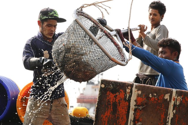 "A picture made available 22 March 2016 shows migrant fishermen from Myanmar on a Thai fishing boat unloading fish at a jetty in Samut Sakhon province, Thailand, 11 March 2016. The theme of World Water Day 2016, observed on 22 March, is ""better water, better jobs"", and focuses on informing people about the role that clean and abundant water sources has on the lives of people that work in water related industries. South East Asia's fishing industry faces issues of over-fishing and forced and illegal labor on fishing boats. (Photo by Diego Azubel/EPA)"