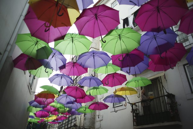 A man looks out from his balcony at a street decorated with umbrellas of different colors at the Alfama neighborhood in Lisbon March 18, 2014. (Photo by Rafael Marchante/Reuters)