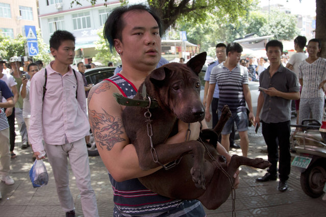 A dog lover activist carries a dog which he bought from a dog seller leaves a market during a dog meat festival in Yulin in south China's Guangxi Zhuang Autonomous Region, Tuesday, June 21, 2016. (Photo by Andy Wong/AP Photo)