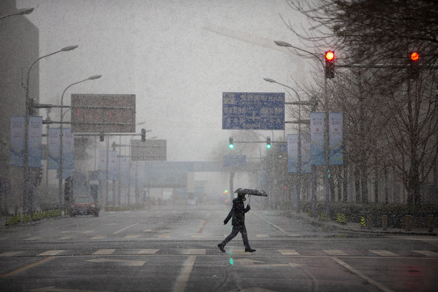 A man wears a mask as he walks across an empty intersection during the morning rush hour as snow falls in Beijing, Friday, February 14, 2020. (Photo by Mark Schiefelbein/AP Photo)