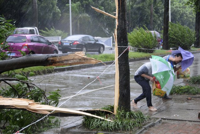 People bend low while trying to walk past fallen tree branches against strong winds and heavy rainfall as Typhoon Rammasun hit Nanning, Guangxi Zhuang Autonomous Region July 19, 2014. The super typhoon has killed eight people in China since making landfall on Friday afternoon, state media said on Saturday, after hitting parts of the Philippines and leaving 77 dead. (Photo by Reuters/Stringer)