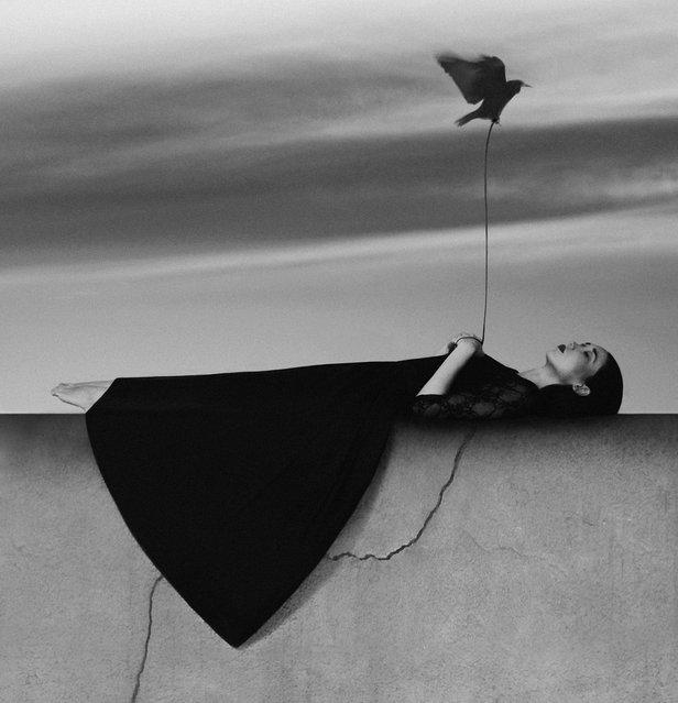 Destiny. (Noell S. Oszvald)