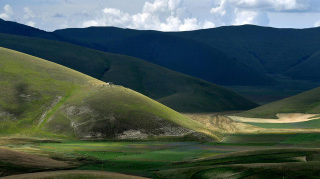 This picture taken on July 25, 2016 shows a panoramic view of the lentil fields near Castelluccio, a small village in central Italy's Umbria region. (Photo by Tiziana Fabi/AFP Photo)