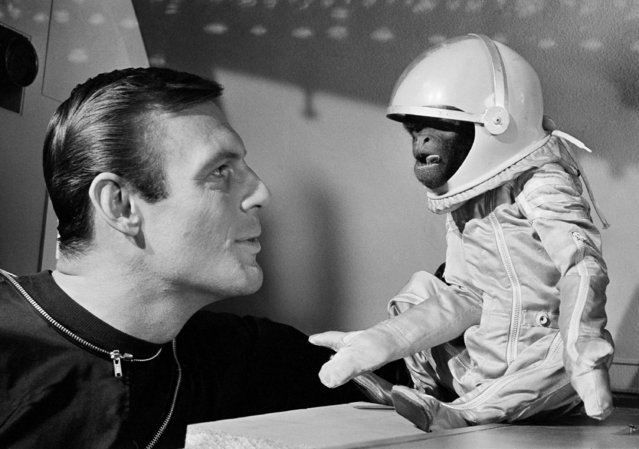 "His own space suit, with oxygen tank, doesn't make Barney the monkey any happier as he and actor Adam West view the situation in their space capsule in Hollywood on January 24, 1964. Barney, a South American woolly monkey, is blasted into space with West, as an astronaut, in a new movie, ""Robinson Crusoe on Mars"". (Photo by AP Photo)"