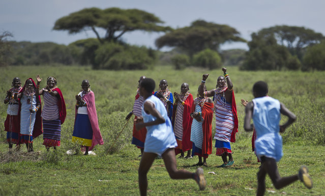 Maasai women spectators whoop and cheer as runners from their village pass them in the lead, at the annual Maasai Olympics in the Sidai Oleng Wildlife Sanctuary near to Mt Kilimanjaro, in southern Kenya Saturday, December 13, 2014. (Photo by Ben Curtis/AP Photo)