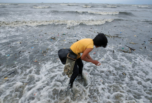 A resident takes advantage of the gloomy weather to collect washed up clams brought by crashing waves due to strong winds of Super Typhoon Haima, local name Lawin, along the coastal coastal areas in metro Manila, Philippines October 20, 2016. (Photo by Romeo Ranoco/Reuters)