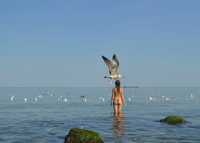 A seagull passes a girl preparing to refresh herself during +35C  heat in Black Sea willage of Zatoka, some 60 km from the Ukrainian city of Odessa on August 5, 2012. (Photo by Sergei Supinsky/AFP Photo)