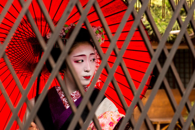 """""""An apprentice geisha. The half-painted lips indicates to others that she is in training, and to forgive her for any mistakes she makes. This girl is in her second year, aged 17"""". (Photo by Sharon Kynaston/The Guardian)"""