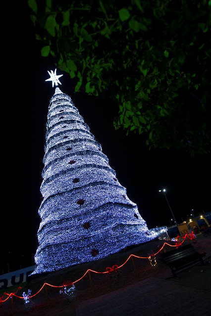 An illuminated Christmas tree is seen in a park in Machala, Ecuador, December 14, 2016. (Photo by Guillermo Granja/Reuters)