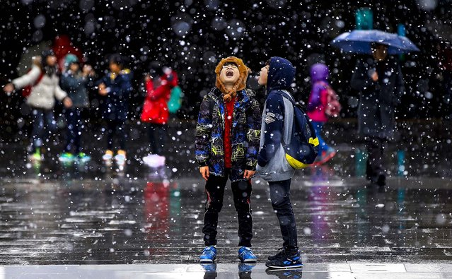 Students play in the snow in Seoul, on November 27, 2013. The South Korean Meteorological Administration reported that it was the second snow of the season in the city. (Photo by Lee Jin-man/Associated Press)