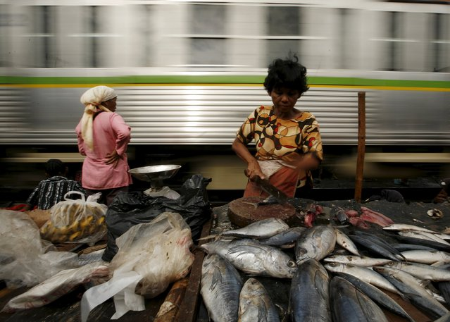 A woman chops a fish at her stall as a train passes by at a morning market near Duri train station in Jakarta in this February 12, 2009 file photo. (Photo by Reuters/Beawiharta)