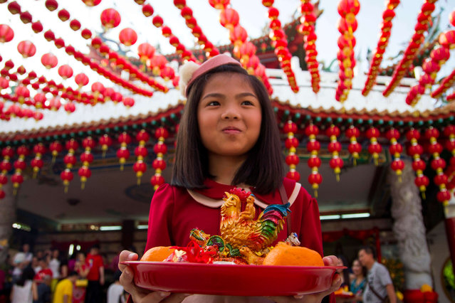 A Malaysian ethnic Chinese girl holds offerings on the first day of Lunar New Year celebrations at a temple in Kuala Lumpur, Malaysia, Saturday, January 28, 2017. The celebrations mark the Year of the Rooster in the Chinese calendar. (Photo by AP Photo/Lim Huey Teng)