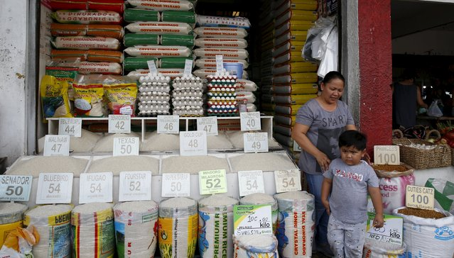 Different varieties of local and imported rice for sale are displayed at a retail shop in BF Homes, Paranaque, Metro Manila March 1, 2016. (Photo by Erik De Castro/Reuters)