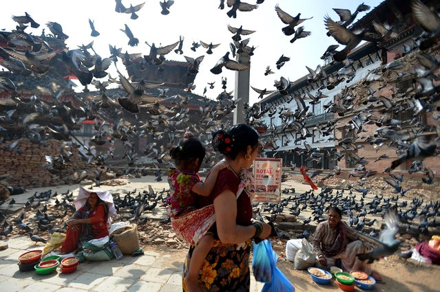 Flying pigeons pass over Nepalese street vendors near the earthquake damaged UNESCO World Heritage Site, Durbar Square in Kathmandu on May 20, 2015. Nearly 8,500 people have now been confirmed dead in the disaster, which destroyed more than half a million homes and left huge numbers of people without shelter with just weeks to go until the monsoon rains. (Photo by Ishara S. Kodikara/AFP Photo)