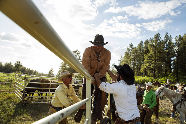 Cowboys David Thompson (L) and Wyatt Williams tease Grant Gunn as he climbs over a fence near Ignacio, Colorado June 12, 2014. The land where the cattle graze is leased from the Forest Service by third-generation rancher Steve Pargin. Several times a year, he and a crew led by his head cowboy, David Thompson, spend a week or more herding cattle from mountain range to mountain range to prevent them from causing damage to fragile ecosystems by staying in a single area too long. (Photo by Lucas Jackson/Reuters)