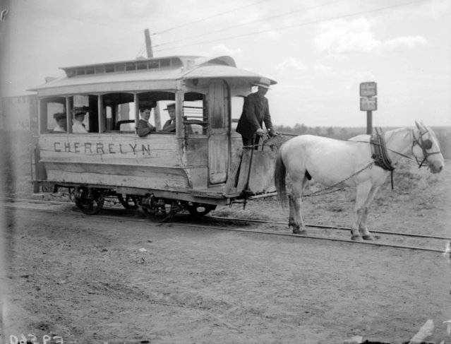 """A horse pulls the Cherrelyn Gravity and Broncho Street Railway horse car uphill towards Cherrelyn, (Englewood) Arapahoe County, Colorado from the South Broadway trolley connection at Orchard Place between 1905 and 1910. John Bogue, (conductor, driver and lessee) steers the car as passengers look out the open windows. """"Cherrelyn"""" is painted on side of the weathered car and the horse has a harness and blinders. (Photo courtesy of Denver Public Library Western History/Genealogy Dept.)"""