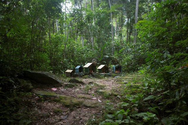 Altars are seen on the way to the Maria Lionza shrine at the Sorte Mountain on the outskirts of Chivacoa, in the state of Yaracuy, Venezuela October 11, 2015. (Photo by Marco Bello/Reuters)