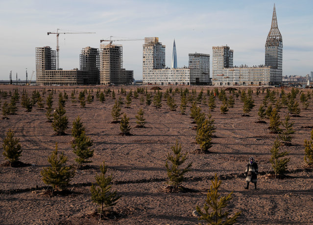 A person walks amidst trees near the construction site of new apartment blocks, as the spread of the coronavirus disease (COVID-19) continues, in Saint Petersburg, Russia on April 8, 2020. (Photo by Anton Vaganov/Reuters)