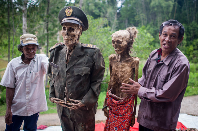 Relatives pose with the bodies of bodies of Ne'TLimbong (R) and L Sarungu (L), an army veteran dead for 10 years, during the Ma'nene ritual at Panggala Village on August 25, 2016 in Toraja, Indonesia. (Photo by Sijori Images/Barcroft Images)
