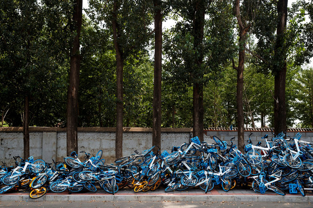 Meituan and Hellobike shared bicycles are seen piled up on a roadside, following an outbreak of the coronavirus disease (COVID-19), in Beijing, China on August 7, 2020. (Photo by Thomas Peter/Reuters)