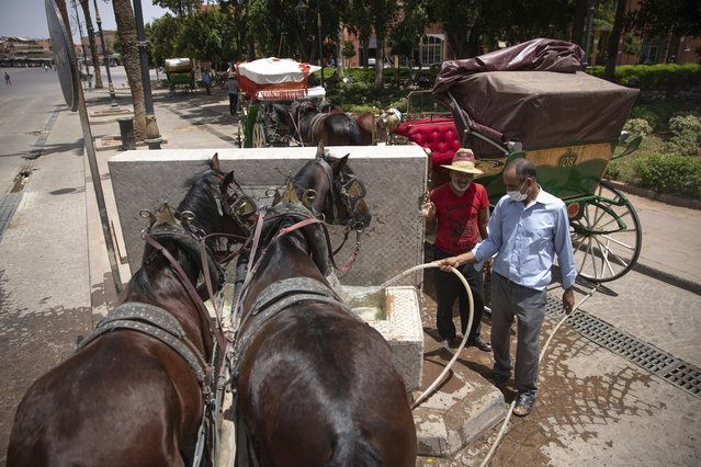 Horse-carriage owners feed their horses at a fountain as they wait for customers on a hot summer day in Marrakech, Morocco, Wednesday, July 22, 2020. (Photo by Mosa'ab Elshamy/AP Photo)