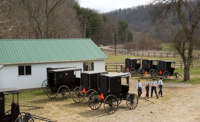 Amish boys walk to the school house for their final day of class in Bergholz, Ohio on Tuesday, April 9, 2013. (Photo by Scott R. Galvin/AP Photo)