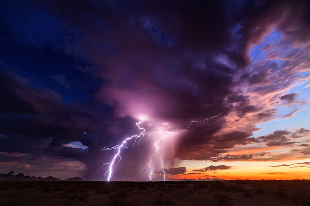 Beautiful but deadly: Mike captures forks of lightnings shooting out of the dark and brooding sky on August 14, 2015 in Arizona, United States. (Photo by Mike Olbinski/Barcroft Media)