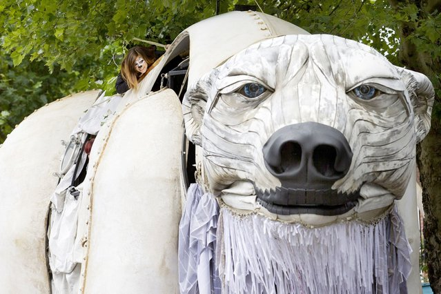A Greenpeace activist ducks a low branch on top of Aurora, a giant polar bear puppet, as they take part in a street parade to raise awareness of Arctic conservation in London, on September 16, 2013. (Photo by Justin Tallis/AFP Photo)