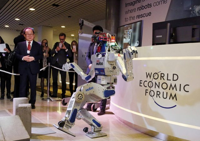 HUBO, a multifunctional walking humanoid robot performs a demonstration of its capacities next to its developer Oh Jun-Ho, Professor at the Korea Advanced Institute of Science and Technology (KAIST) during the annual meeting of the World Economic Forum (WEF) in Davos, Switzerland January 20, 2016. (Photo by Ruben Sprich/Reuters)