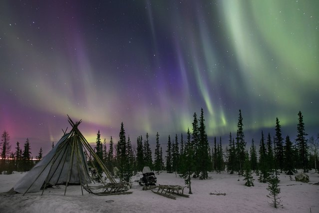 Northern Lights seen near the town of Salekhard, Yamalo-Nenets Autonomous Okrug, Russia on April 08, 2016. (Photo by Sergey Anisimov/Anadolu Agency/Getty Images)