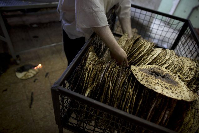 An ultra-Orthodox Jewish man selects special matzoh, a traditional handmade Passover unleavened bread, at a bakery in Bnei Brak near Tel Aviv, Israel. Thursday, April 10, 2014. (Photo by Oded Balilty/AP Photo)