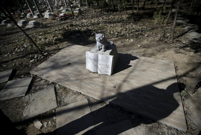 """A pet owner stands next to a tomb with a dog statue at Baifu pet cemetery ahead of the Qingming Festival on the outskirts of Beijing, China March 27, 2016. The Chinese characters on the gravestone read: """"Gently you left, but will be in my heart forever"""". (Photo by Jason Lee/Reuters)"""