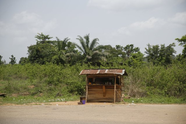 A lone shed is seen along a road leading to a cocoa farm in Ile-Oluji village in Ondo state, southwest Nigeria March 29, 2016. (Photo by Akintunde Akinleye/Reuters)