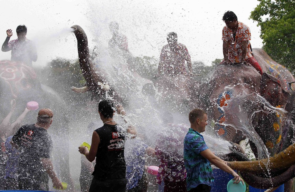 Elephant Water Fight for Songkran Festival in Thailand