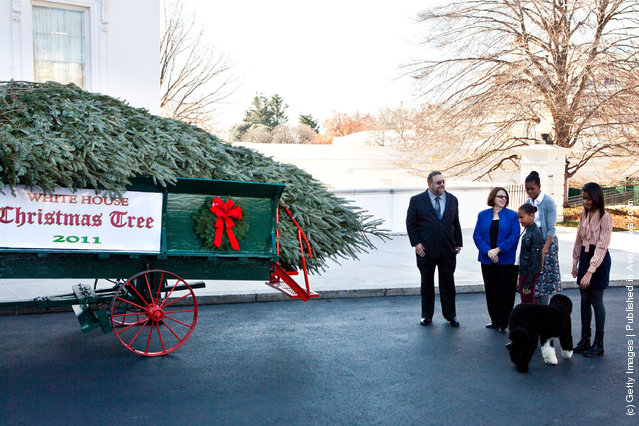 2011 National Christmas Tree Association Grand Champion winners Tom Schroeder (L) and Sue Schroeder (2L) talk with first lady Michelle Obama (2R) and daughters Sasha Obama (C) and Malia Obama as they are presented with the official White House Christmas Tree