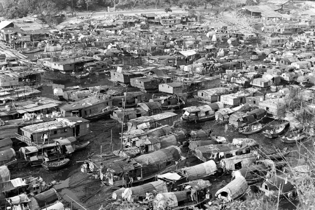 Thousands of sampans and junks are packed like sardines at Aberdeen sampan harbor on Hong Kong island. Many of these boats are not seaworthy and are used as homes in a land-hungry city and island where practically every square inch of area is used for living quarters, July 31, 1962. (Photo by AP Photo)