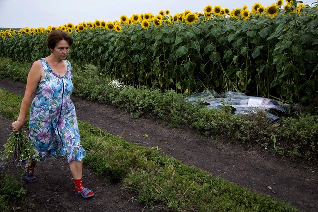 A woman walks past a body covered with a plastic sheet near the site of a crashed Malaysia Airlines passenger plane near the village of Rozsypne, Ukraine, on Jule 18, 2014. Rescue workers, policemen and even off-duty coal miners were combing a sprawling area in eastern Ukraine near the Russian border where the Malaysian plane ended up in burning pieces Thursday, killing all 298 aboard. (Photo by Dmitry Lovetsky/Associated Press)