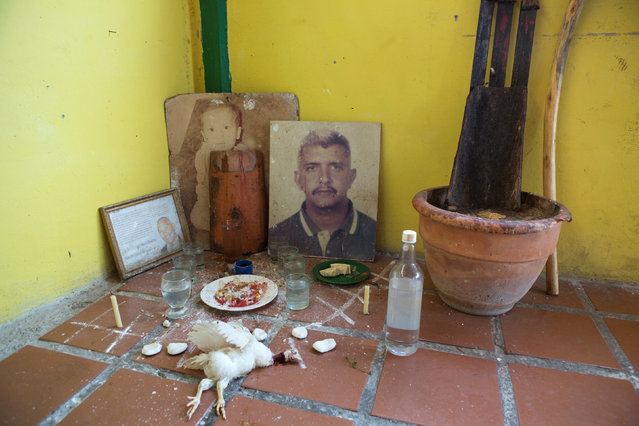 The remains of a dead chicken, liquor, and other items used in Santeria rituals are seen in a corner at a house in Caracas, Venezuela November 7, 2015. (Photo by Marco Bello/Reuters)