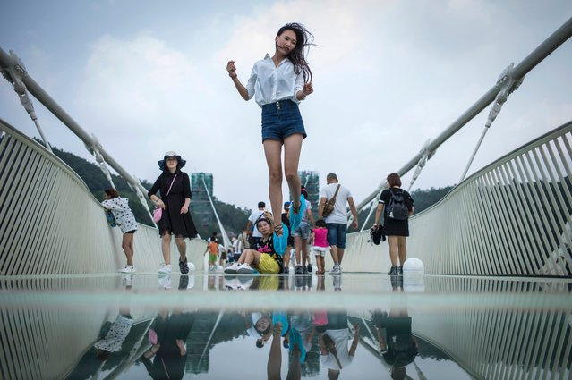 A visitor jumps for a photograph on the world's highest and longest glass-bottomed bridge  above a valley in Zhangjiajie in China's Hunan Province on August 21, 2016. The bridge, which opened to the public on a trial basis on Saturday, spans 430 meters (1,410 feet) and rises about 300 meters (984 feet) above a valley in a scenic zone, making it the world's highest and longest glass-bottomed bridge according to Chinese state media. (Photo by Fred Dufour/AFP Photo)