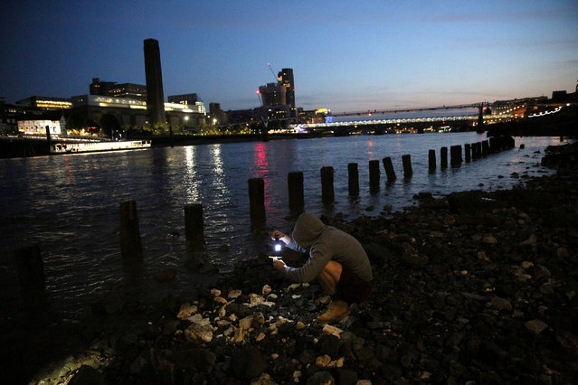 "A mudlark uses a torch to look for items on the bank of the River Thames in London, Britain June 06, 2016. Mudlarking is believed to trace its origins to the 18th and 19th century, when scavengers searched the Thames' shores for items to sell. These days, history and archaeology fans are the ones hoping to find old relics such as coins, ceramics, artifacts or everyday items from across centuries. They wait for the low tide and then scour specific areas of exposed shores. ""If you're in a field you could be out all day long, with the river you're restricted to about two or three hours,"" mudlark Nick Stevens said. While many just use the naked eye for their searches, others rely on metal detectors for which a permit from the Port of London Authority is needed. Digging also requires consent. (Photo by Neil Hall/Reuters)"