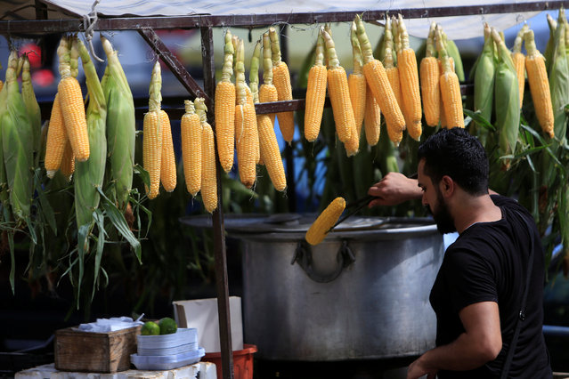 A man sells corn prior to Eid celebrations in Sidon, South Lebanon September 11, 2016. (Photo by Ali Hashisho/Reuters)