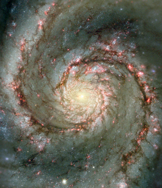 The Whirlpool Galaxy, a classic spiral galaxy, is pictured in this NASA handout photo. At only 30 million light years distant and fully 60 thousand light years across, M51, also known as NGC 5194, is one of the brightest and most picturesque galaxies on the sky. This image is a digital combination of a ground-based image from the 0.9-meter telescope at Kitt Peak National Observatory and a space-based image from the Hubble Space Telescope highlighting sharp features normally too red to be seen. (Photo by NASA)